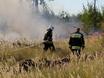 В Воронеже горят пустыри и лес  130466