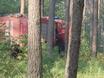 В Воронеже горят пустыри и лес  130474
