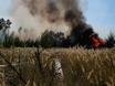 В Воронеже горят пустыри и лес  130482