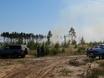В Воронеже горят пустыри и лес  130484