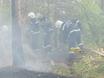 В Воронеже горят пустыри и лес  130485