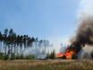 В Воронеже горят пустыри и лес  130492