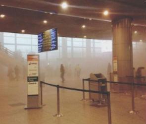 Из-за пожара в аэропорту «Домодедово» воронежцы не могут улететь в Москву