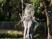 Выставка «Воронеж — город-сад»  131405