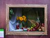 Выставка «Воронеж — город-сад»  131413