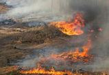 70 ландшафтных пожаров зафиксировано в области за сутки (ФОТО)