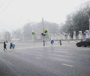 Синоптики допускают, что липецкий снегопад может дойти до Воронежа