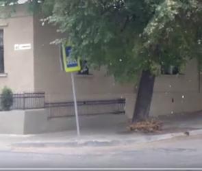Метель в Воронеже 9 октября попала на видео