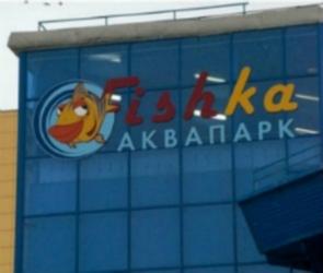 Московская компания приобрела воронежский аквапарк Fishka за 60 миллионов рублей