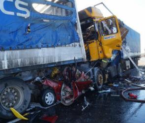 Стали известны подробности страшной аварии на трассе Курск - Воронеж (ФОТО)