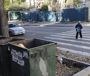 В Воронеже у школы мусорными баками перегородили единственный пешеходный переход