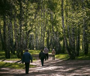 Парки Воронежа