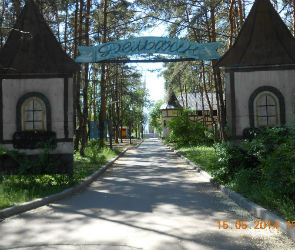 Воронежцы собирают подписи за восстановление парка «Дельфин»