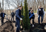 В национальном конкурсе «Лес Победы» лучшим стал воронежский проект
