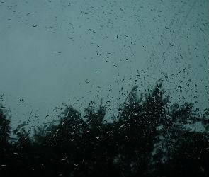 Воронежцев ждет пасмурная и дождливая неделя