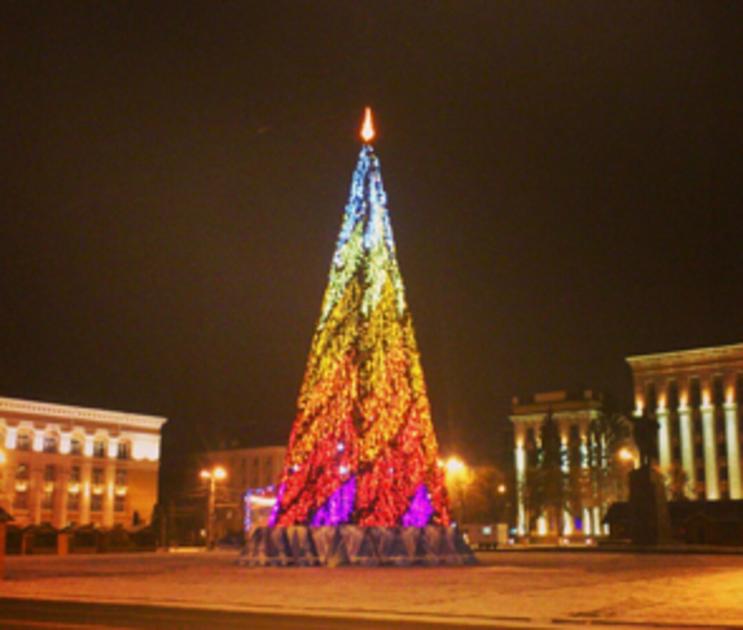 Новогоднюю елку в Воронеже установят за 1,5 миллиона рублей