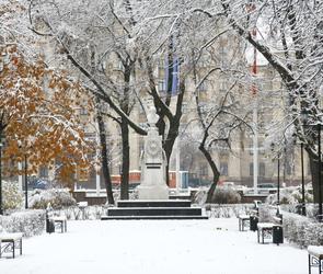 Первый снег в Воронеже