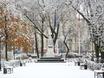 Первый снег в Воронеже  135767