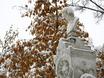 Первый снег в Воронеже  135776