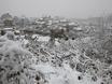 Первый снег в Воронеже  135782