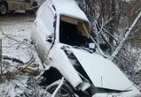На Острогожской ВАЗ врезался в дерево: водитель чудом остался жив (ФОТО)
