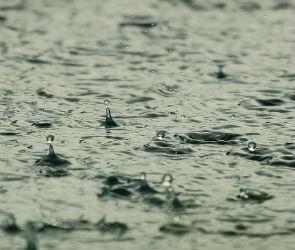 Спасатели предупредили воронежцев о сильном ливне и ветре