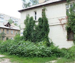Воронежские власти собираются искать инвесторов для застройки двух кварталов