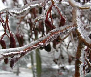В выходные воронежцам обещают мороз и гололед