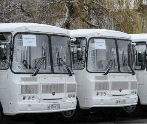 105 новых автобусов выйдут на маршруты в Воронежской области