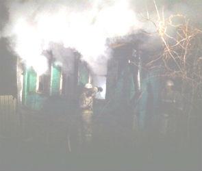 Женщина и ребенок погибли на пожаре в Воронежской области