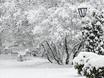 Воронеж заметает снегом  136762