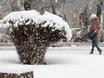 Воронеж заметает снегом  136768