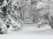Воронеж заметает снегом  136769