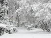Воронеж заметает снегом  136771