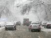 Воронеж заметает снегом  136773