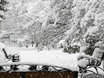 Воронеж заметает снегом  136778