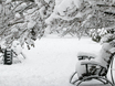 Воронеж заметает снегом  136793