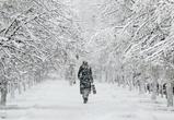 Воронеж заметает снегом