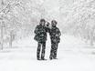 Воронеж заметает снегом  136803