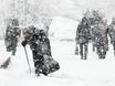 Воронеж заметает снегом  136804