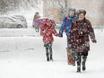 Воронеж заметает снегом  136808