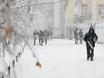 Воронеж заметает снегом  136809