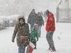 Воронеж заметает снегом  136812
