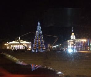 В Воронеже опробовали иллюминацию главной елки города (ВИДЕО)