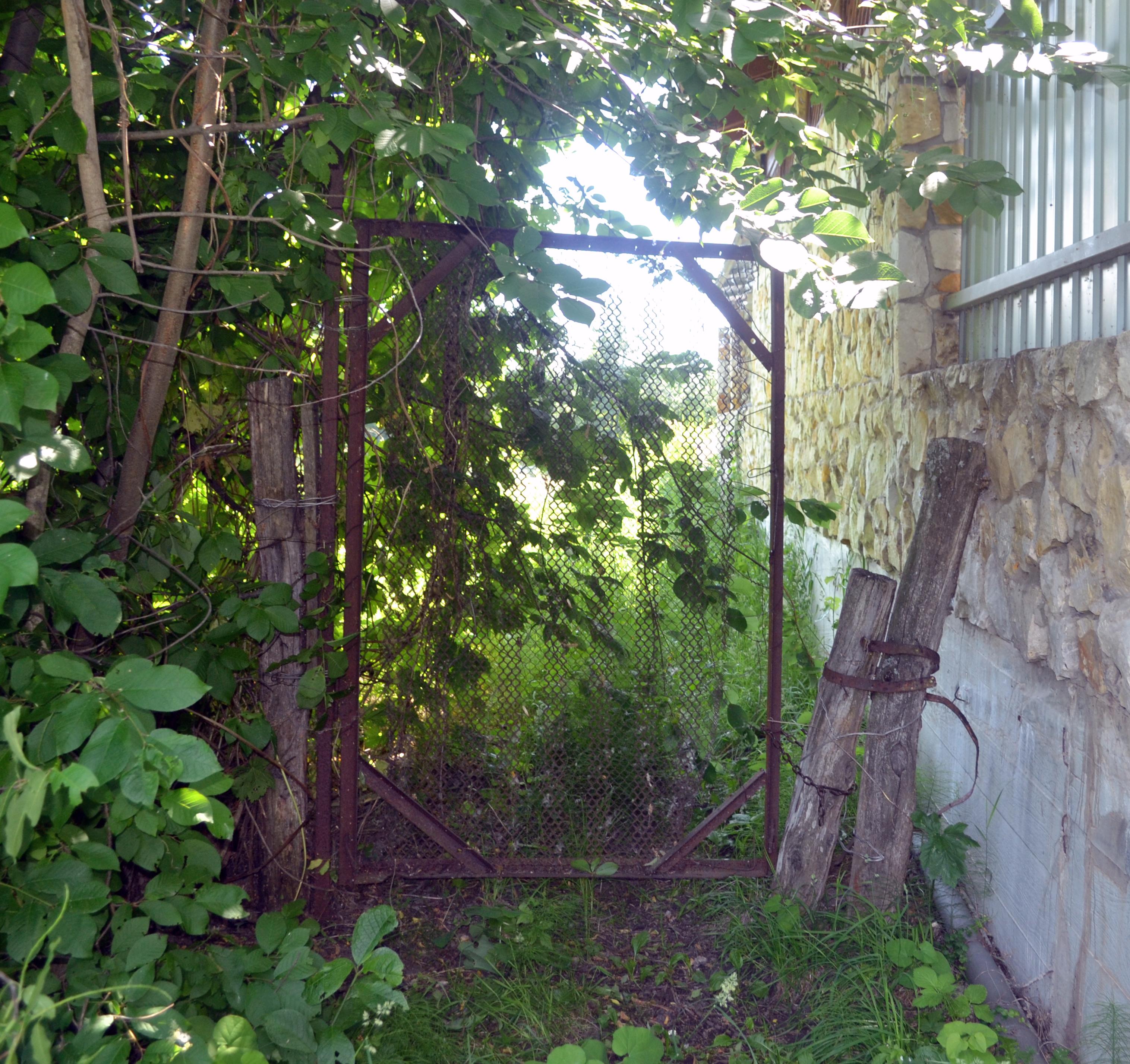 Рамонский район: земельный бес и предел терпенья