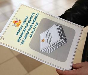 Бюджет Воронежской области на 2016 год преодолел первое чтение