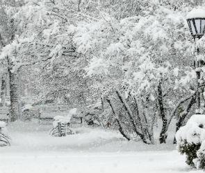 Воронежцев ожидает снежная неделя