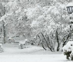Воронежских автолюбителей предупреждают о снеге, тумане и гололедице