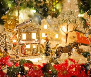 Благотворительная акция «Добрый Новый год» пройдет в Воронеже