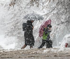 17 декабря воронежцев ждет сильный, местами с порывами, ветер и гололедица